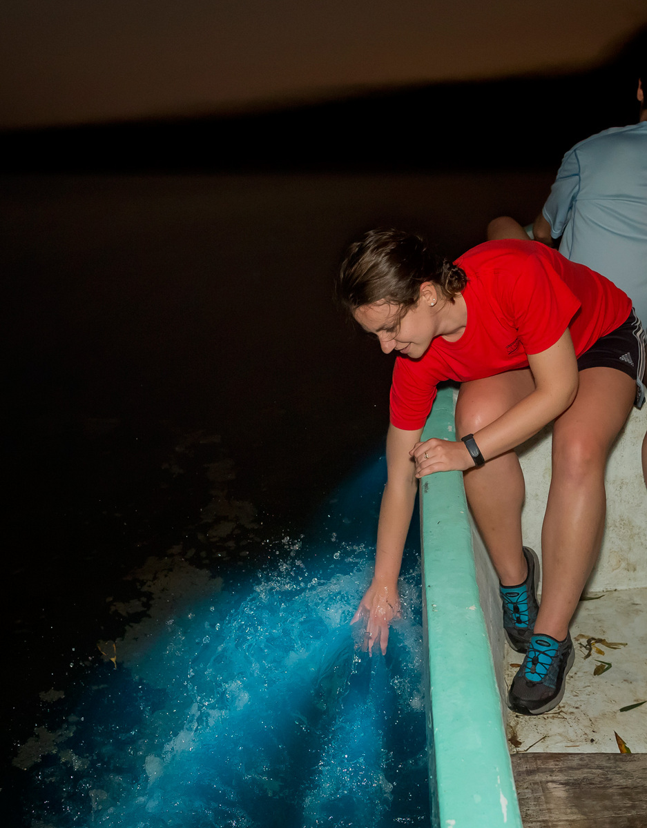 Gretchen puts her hand in the water to create her own luminescent wake. The tour group is delighted to see fish of all sizes swimming through the water, leaving trails of light behind them.
