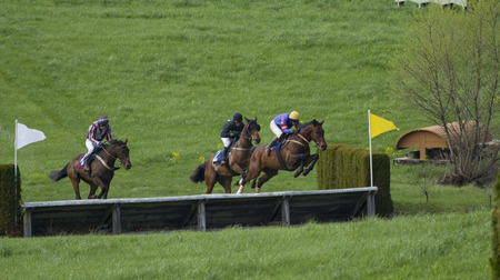 """The Steeplechase"" (12) (Middleburg, Virginia)"