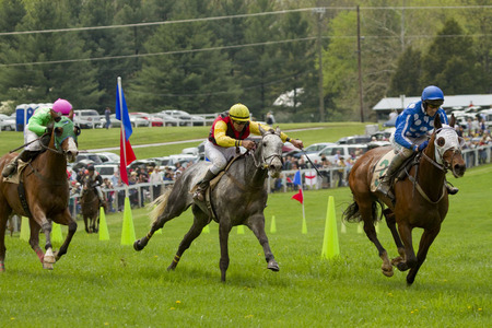"""The Steeplechase"" (11) (Middleburg, Virginia)"
