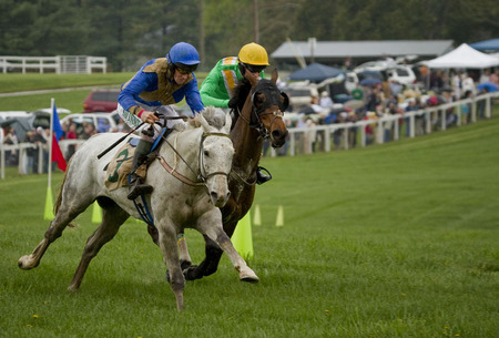 """The Steeplechase"" (7) (Middleburg, Virginia)"