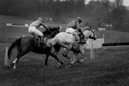 """The Steeplechase"" (1) (Middleburg, Virginia)"