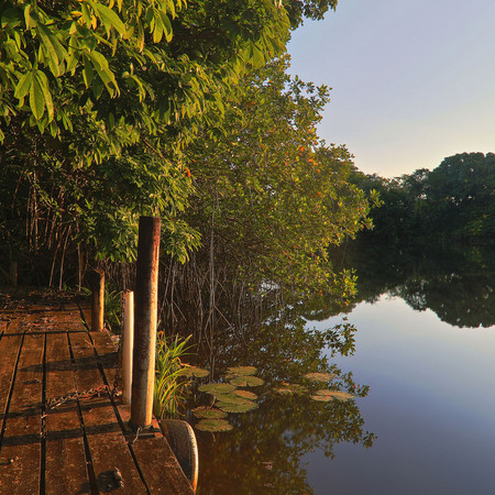 Another view of Sittee River from the dock at Possum Point Biological Station.